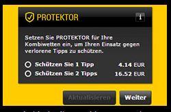2. Schritt_Protektor