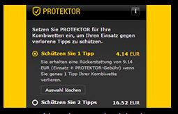 3. Schritt_Protektor