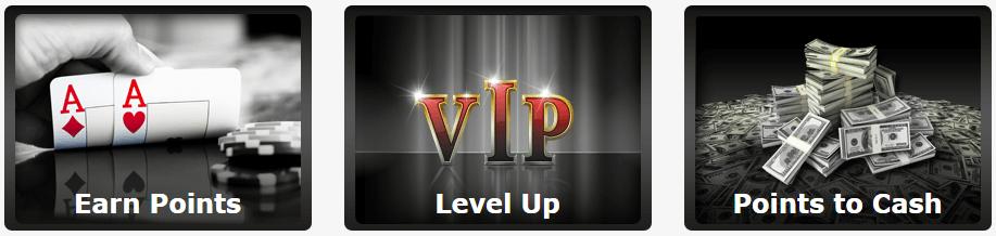 Poker VIP Winner